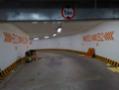 龙阳广场通道引导标识