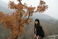 陈静 北京师范大学 学科教学(历史)专业   硕士