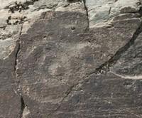 红石崖沟岩画(同心圆图案)